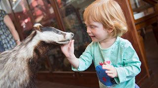 Family Activities in Keswick and the Lake District