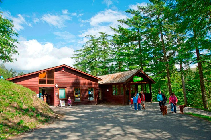 Whinlatter Forest Park