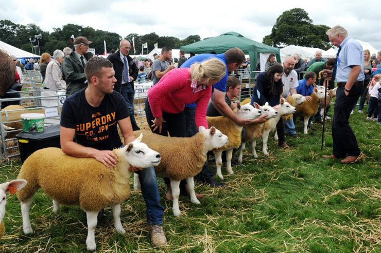 Cockermouth Show 2017